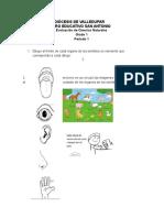 Evaluaciones Profe Marta 2019