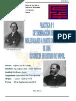 Informe 1 PeSos Moleculares (2)-1