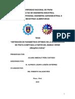 IND-PEÑ-CUS-2019.pdf