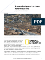 Natgeo Timber Resources 50458 Article Only