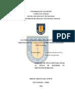 Jara Astete.pdf