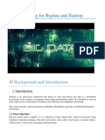 Big-Data-Hadoop-Training-Report.pdf
