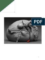 Monografia y foto Salud ambiental.pdf