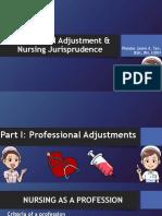 Professional Adjustment & Nursing Jurisprudence
