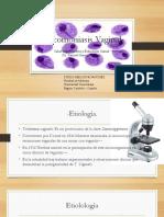 tricomoniasisvaginal-140621110641-phpapp02
