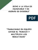 vision de emergencia - copia - copia (4).docx