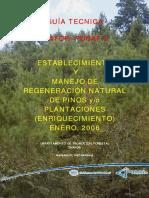 Guia Tecnica de Apoyo Al Productor Forestal Para Establecimi