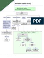 Megaloblastic Anemia Testing Algorithm.pdf