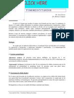 Apuntes de Cirugía-Secc13