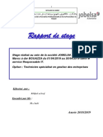 Rapport de Stage Jobelsa.