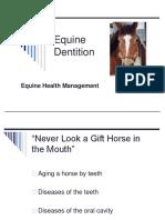 Horse Dentition