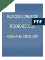 indicadores_cria