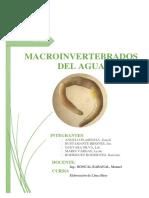 MACROINVERTEBRADOS.docx