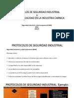 Protocolos de Seguridad Industrial