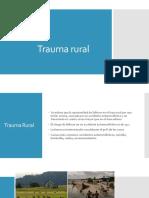 Trauma Rural