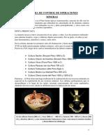 CONTROL DE OPERACIONES MINERAS EN EL PERU.docx
