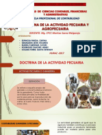 DOCTRINA-DE-LA-ACTIVIDAD-PECUARIA.pptx