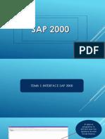 1. Interface Sap 2000