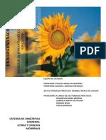 cuadernillo-2017.pdf