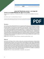 Respuestas fisiológicas de Theobroma cacao L. en etapa de vivero