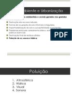 Aula 3 - Poluição.pdf
