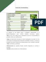 Hortalizas en Hojas Ecologia