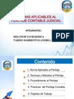 Exposicion Peritaje Cont