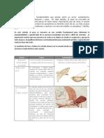 historia del PESO Y BALANCE.docx