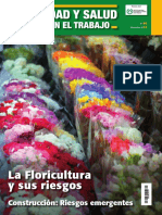 flores y su riwsgos.pdf