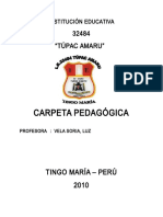 Carpeta Pedagógica 2009