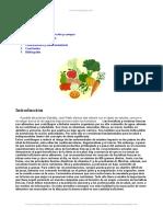 monografia verduras.doc