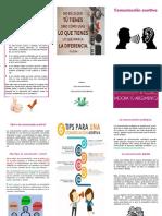folleto lina organizacional.pdf