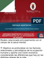 322773893 Enfoque Adaptativo 1