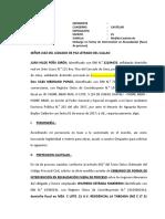 medida cautelar Estrada Marreros.docx