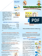 Cartilla Defensa Civil - Callao