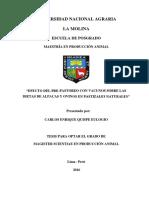 TESIS MOLINA.pdf