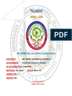 INFORME VISITA SAGUAPAC - OSWALDO PADILLA VARGAS.docx
