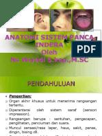Ppt Anatomi Sistem Panca Indra