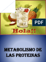 metabolismo de las proteinas