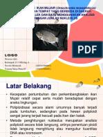 Kajian Poliploidi Ikan Mujair (Oreochromis Mossambicus).Ppt