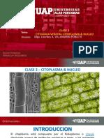 2019 - Bf - Clase 3 - Citologia Vegetal - Citolasma & Nucleo