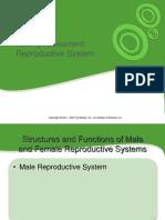 pengkajian reproduksi