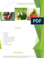 Culturas Frutiferas1.pptx