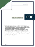 RUMBOS Y ORIENTACIONES INFORME11.docx