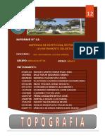 Topo-Informe-12.docx