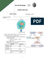 Patología Resumen Lesion Celular