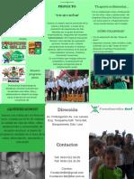 Brochure Tocar y Soñar 1