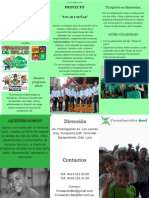 Brochure Tocar y Soñar 1.pdf