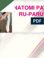 anatomi-paru-paru-ppt.pptx