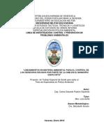 ANTEPROYECTO DE TESIS CAP. PADRON O CARLOS.docx